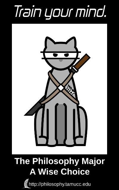 Ninja Cat Poster